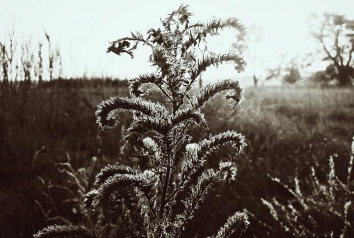 Letztens ... und dann Herbst